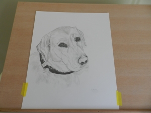 'Bella' in pencil