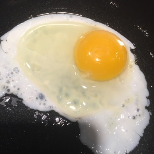 Your brain on eggs